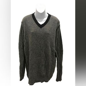 Express Grey Long Sleeve Wool V-Neck Sweater